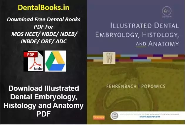Download Illustrated Dental Embryology, Histology and Anatomy PDF