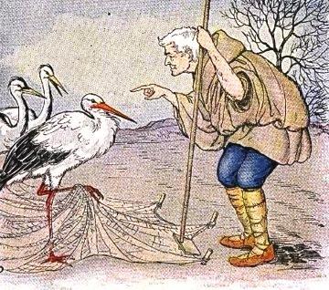 Cerita The Farmer and the Stork
