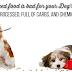 Os carboidratos tornam os cães mais gordos: a evidência.