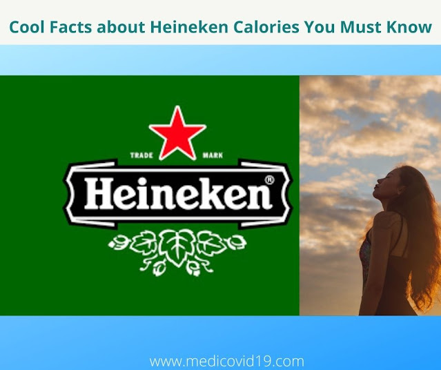 Cool Facts about Heineken Calories You Must Know