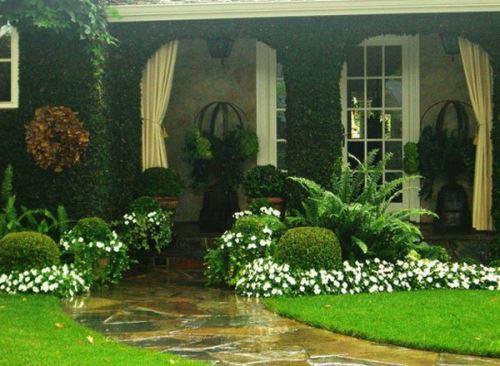 Taman minimalis depan rumah yang hijau