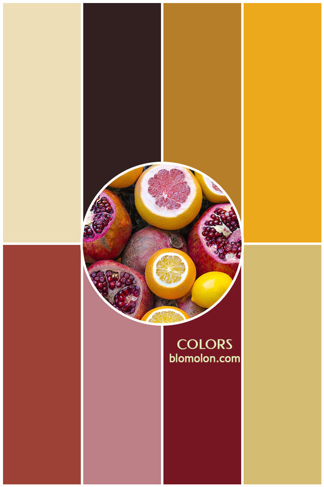 variedad_en_color_colors_4