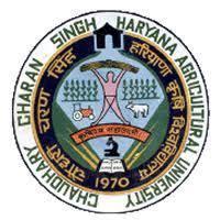 CCS HAU jobs,latest govt jobs,govt jobs,haryana govt jobs,latest jobss,jobs