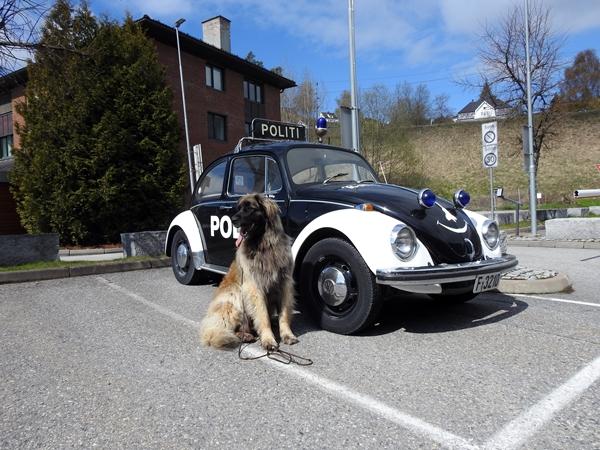 politibil leonberger