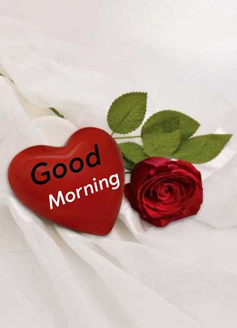 Happy Sunday Good Morning Images For Whatsapp