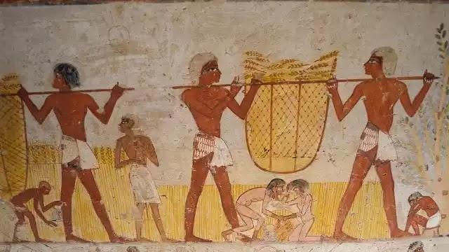 Ancient Egypt Farming