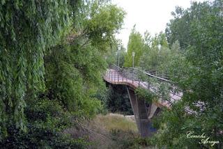 Original puente peatonal ondulante que cruza el rio Duero a su paso por la villa medieval de Almazan.