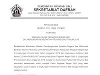 Seleksi CPNS Di Lingkungan Pemerintah Provinsi Bali Tahun 2019