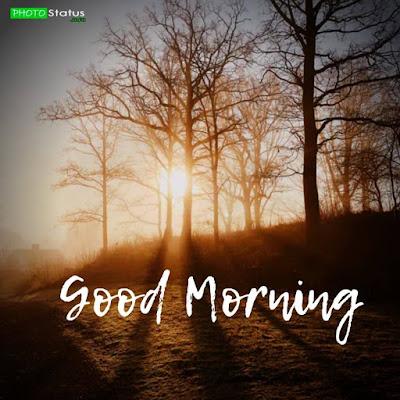 good morning life status