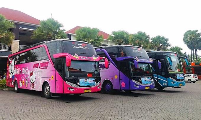 Cara Jadi Agen Bus Pariwisata Untuk Raih Penghasilan Besar di Era Ini