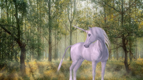 Image: Mystical Unicorn in the Forest, by SilviaP_Design on Pixabay