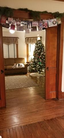 Christmas tree 3 Elm St Newton NJ Authenticated Sears No 163 of Reuben Talmage