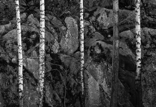 Black-and-White-Wallpaper-HD