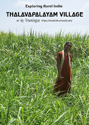 Thalavapalayam Rural tourism in South India Pinterest