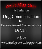 communicating with dogs