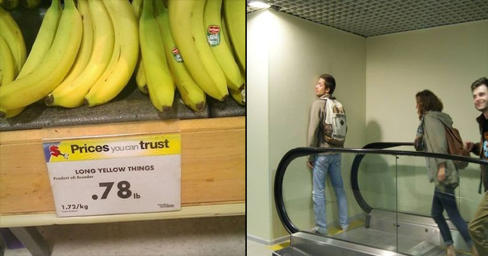 14 Times People Who Had One Job but Still Messed It Up
