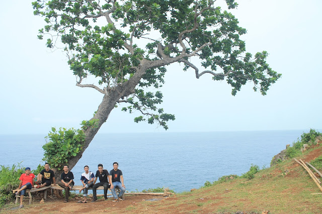 duduk dibawah pohon di pinggir tebing Pantai Kesirat