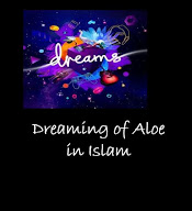 Dreaming of Aloe Islamic Interpretation.