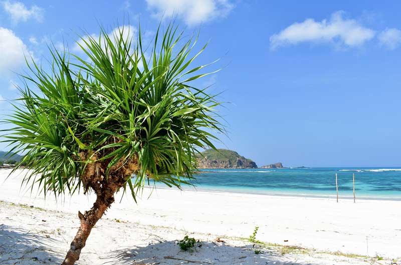 Fasilitas di Pantai Tanjung Aan Lombok