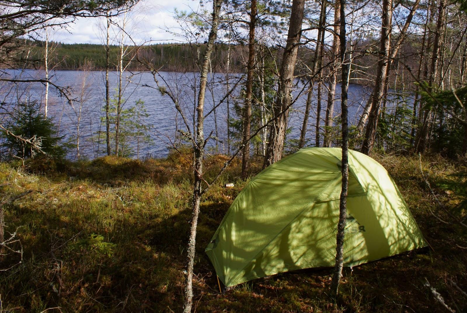 Tält MSR skog