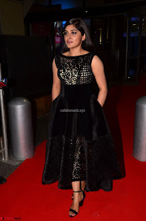 Niveda Thomas Black Sleeveless Cute Dress at 64th Jio Filmfare Awards South 2017 ~  Exclusive 048.JPG