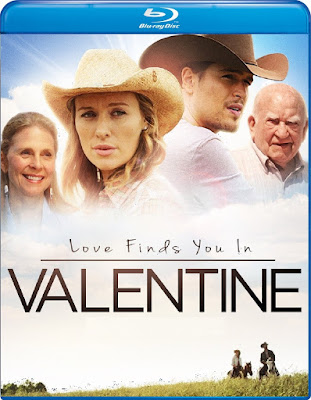 Love Finds You In Valentine (2016) Dual Audio [Hindi – Eng] 720p | 480p BluRay ESub x264 800Mb | 300Mb