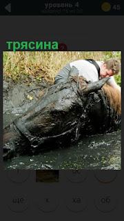в трясину попала лошадь и всадник пытается её вытащить