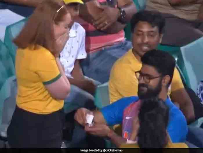 Australia vs India: India Supporter Proposes To Australia Fan During 2nd ODI. Watch, Sidney, News, Video, Cricket, Sports, Austria, Marriage, World
