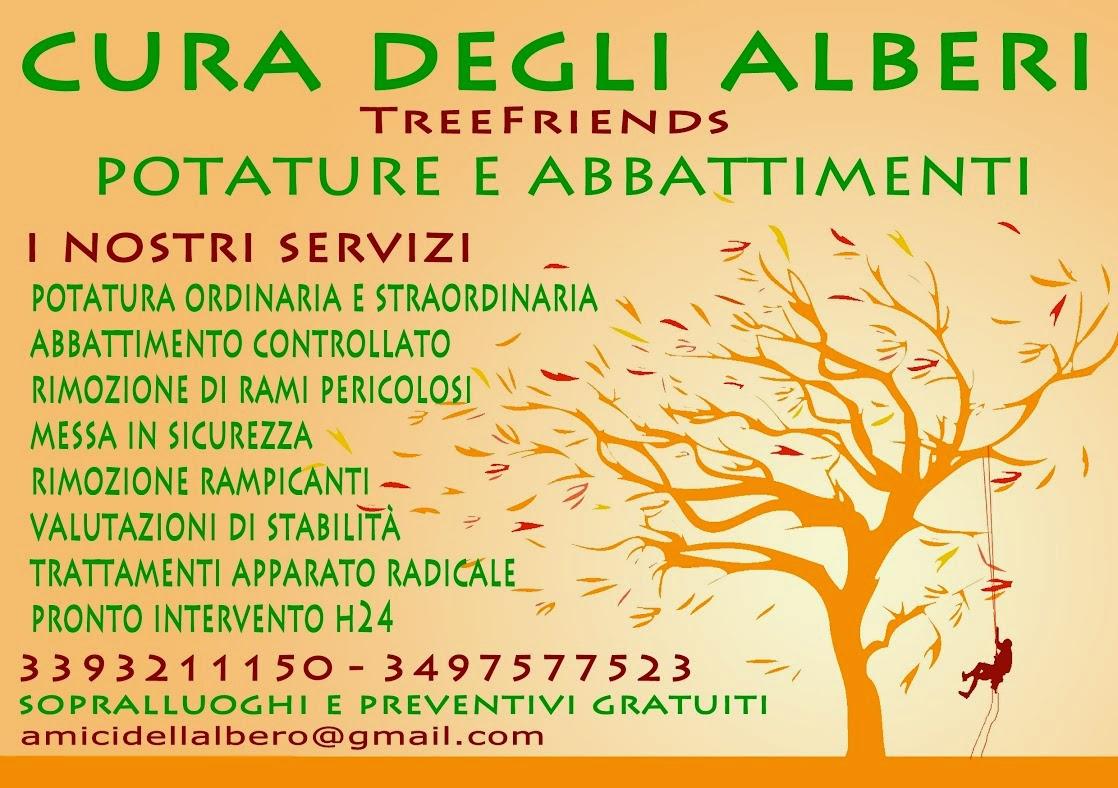 Periodo Migliore Per Potare Quercia potatura alberi roma info. 339 3211150 - 349 7577523