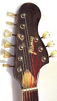 Framus 9-string