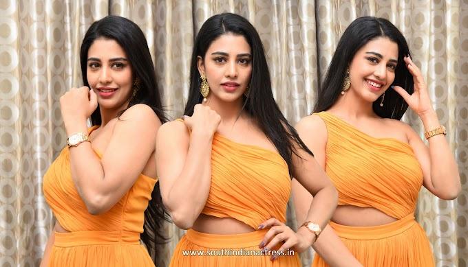 Hot Actress Daksha Nagarkar Photos At Zombie Reddy Pre-Release Event
