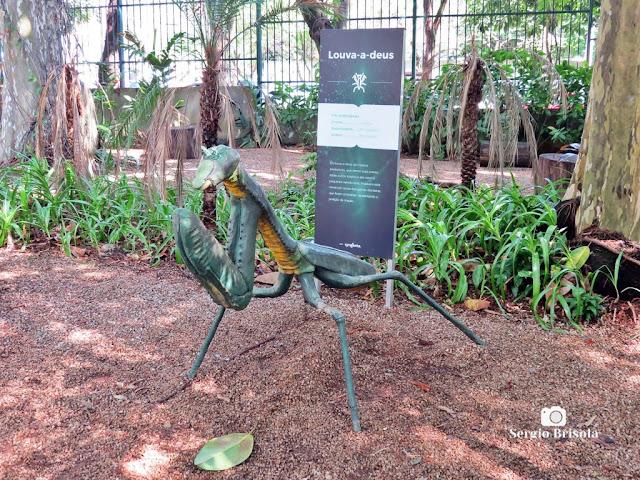 Close-up da Escultura Louva-a-Deus - Planeta Inseto - São Paulo