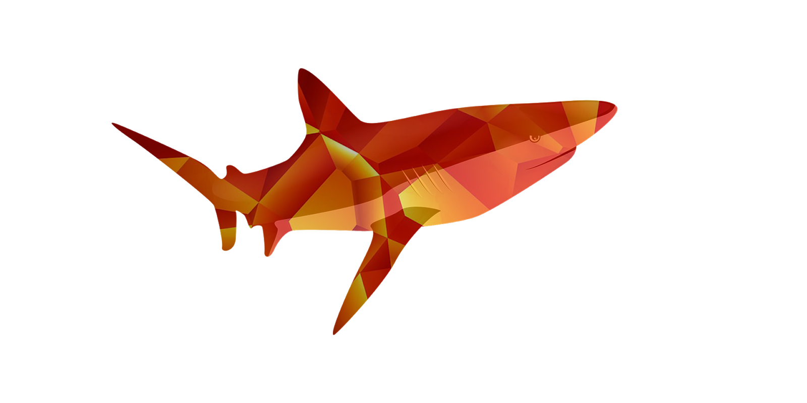 fish images drawing