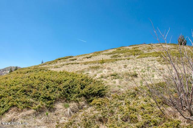 Neolica Peak - 1865 m - Hiking Trail - Baba Mountain, Bitola