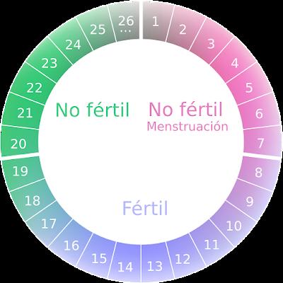 Anticonceptivo natural ¿Descubre aquí cuales son! 1