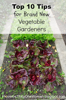 https://proverbsthirtyonewoman.blogspot.com/2014/05/top-10-tips-for-new-vegetable-gardeners.html