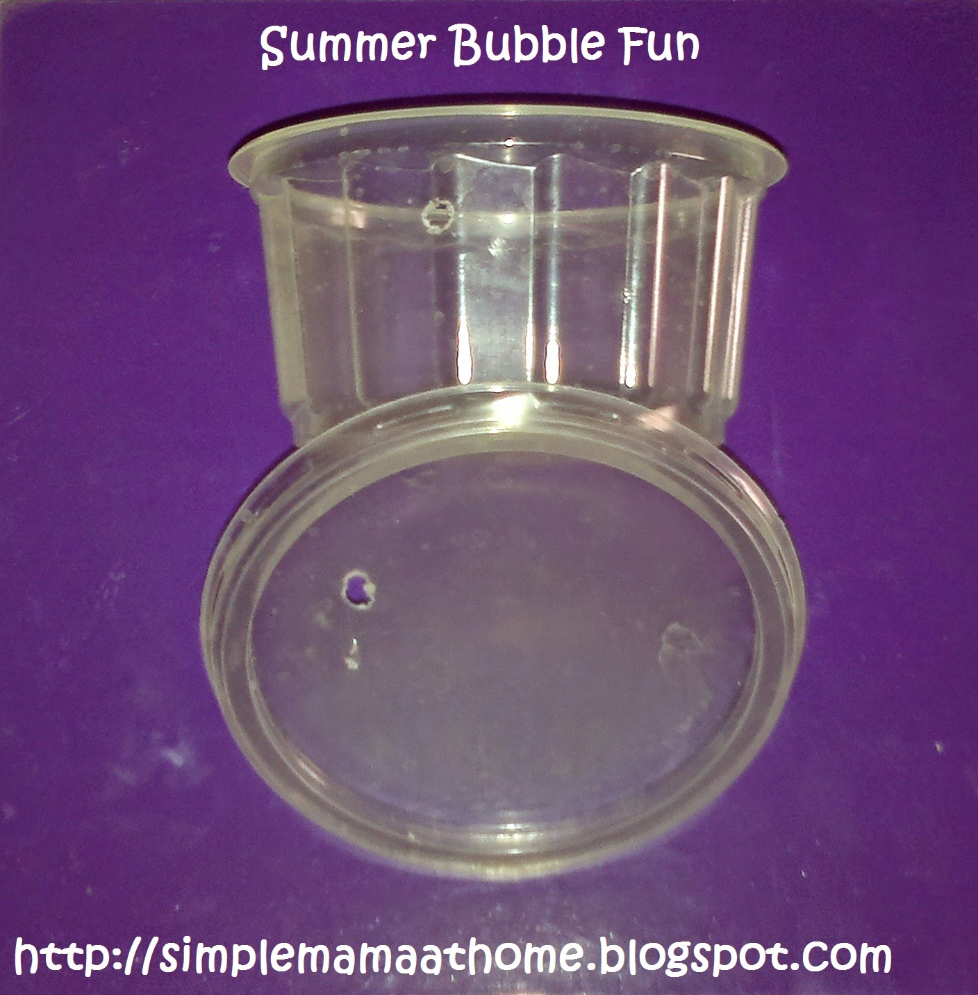 Homemade Bubble Blower and Bubbles