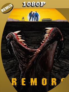 Terror Bajo La Tierra (1990) Latino Remasterizado BDREMUX [Google Drive] Onix