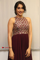Actress Regina Candra Latest Stills in Maroon Long Dress at Saravanan Irukka Bayamaen Movie Success Meet .COM 0003.jpg