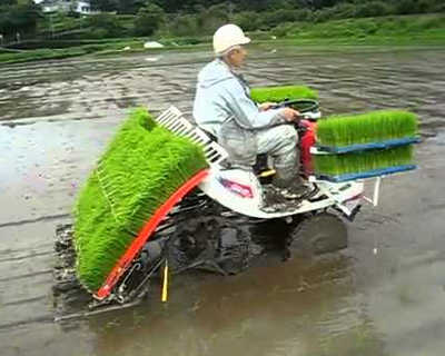 gambar mesin tanam padi