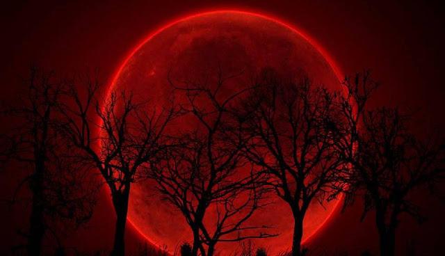 Bulan Merah, Kau Lelaki Rantau, Sekar Cipta Sari