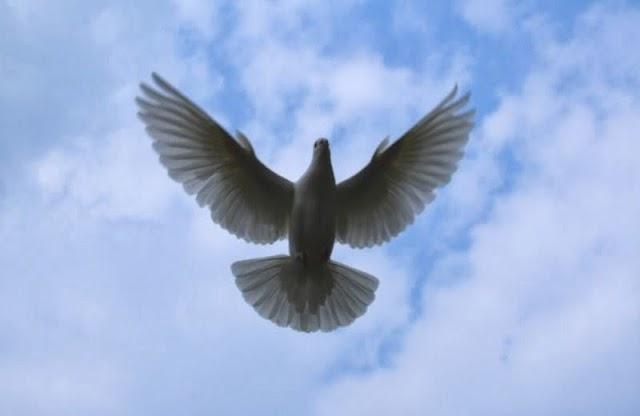Open Heaven 24 September 2020 – The Ageless God