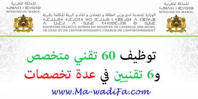 الوزارة المنتدبة لدى وزير الطاقة والمعادن والماء والبيئة المكلفة بالماء