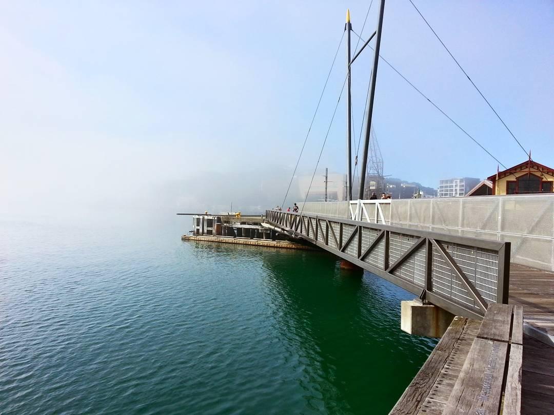 Whairepo Lagoon / Harbour Bridge (Wellington, NZ) in the fog