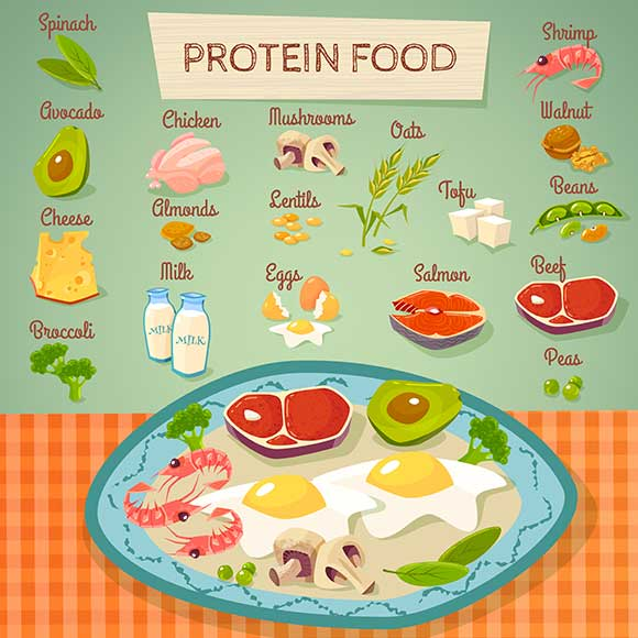 Protein_Chart