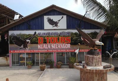 Eagle Feeding Tour Kuala Selangor