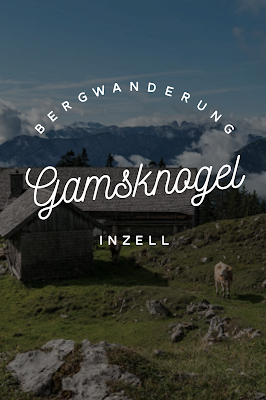 Gamsknogel und Kohleralm  Bergtour Inzell  Wanderung Chiemgauer Alpen 22