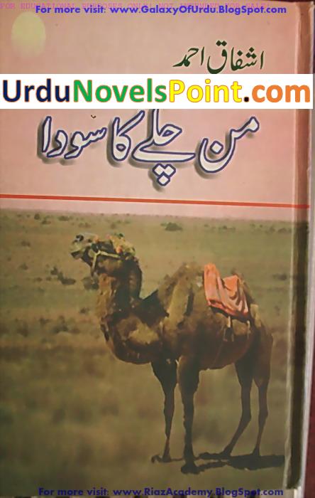 Mann Chalay Ka Sauda / من چلے کا سودا by Ashfaq Ahmed