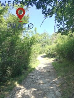 Veduta Sentiero 24 CAI presso i Bifolchi
