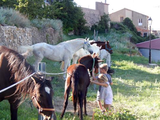 Culla organiza su tradicional concentración de caballos
